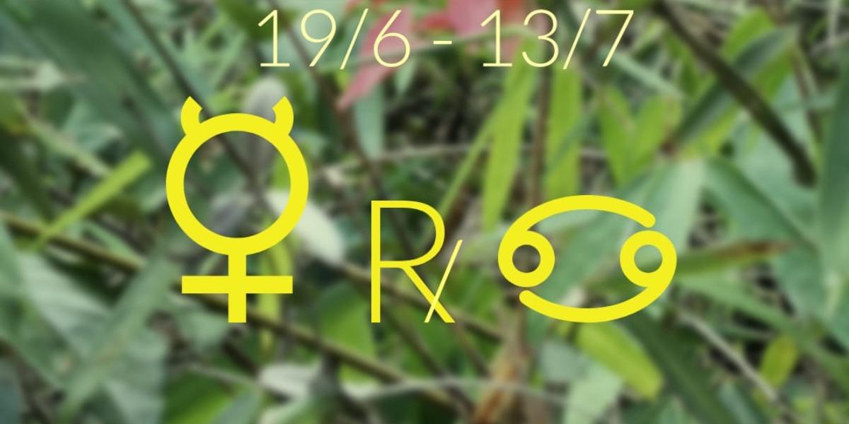 【水星逆行】19/6由巨蟹座14度開始